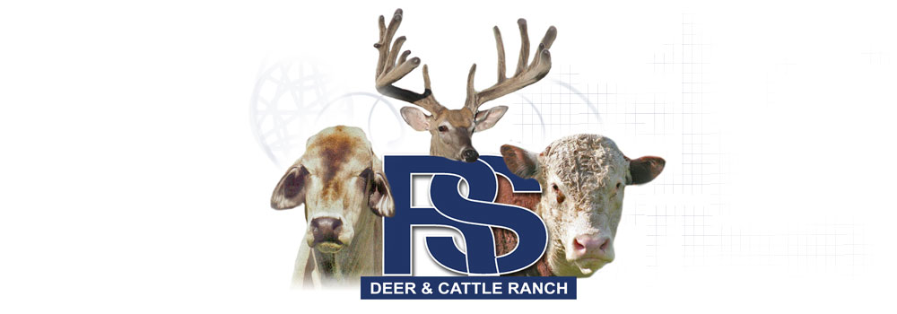 RS Deer and Cattle Ranch